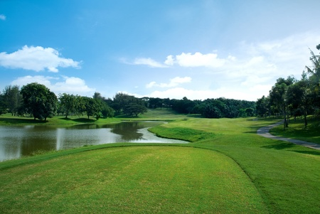 golf landscape: Beautiful greenery view of golf field