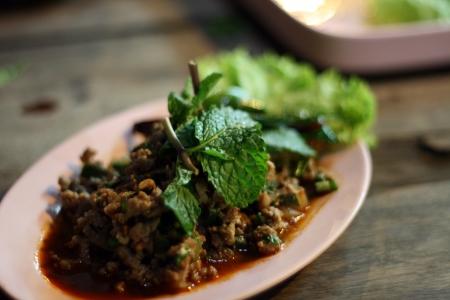 ifestyle: Lab  Mint duck Salad  Stock Photo