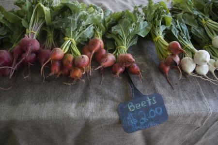 Beets and Turnips Banco de Imagens