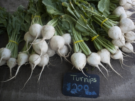 Turnips Stock Photo - 20226823