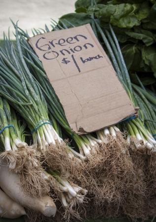 dikon: Cebollas verdes