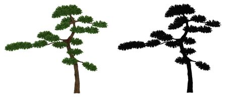 3d illustration. japan garden tree, Bonsai isolated on whtie background with alpha mask. Banco de Imagens