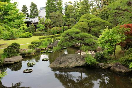 natural view of Japanese green garden.