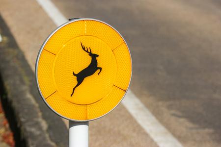 A road traffic sign of beware jumping wild deer into the road at nara national park.