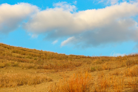 yellow dry grassland yard at wakakusa mountain with blue sky from NARA national park Japan. Imagens