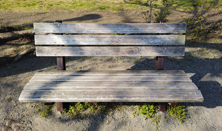 An old wood bench in the outdoor park on the evening time. Фото со стока