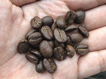 Fresh roasted coffee beans on human hand background. 版權商用圖片