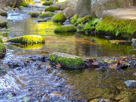 natural mossy rock stone on flowing river on sunny day background.