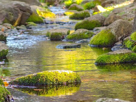 natural mossy rock stone on flowing river on sunny day background. Banco de Imagens