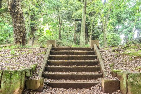 Old dirty concrete stone stair in the natural green park.