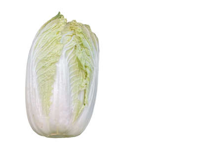 top view of fresh white cabbage isolated on white background.