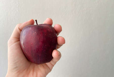 Human hand holding a red ripe red apple with copy space wall as a background.