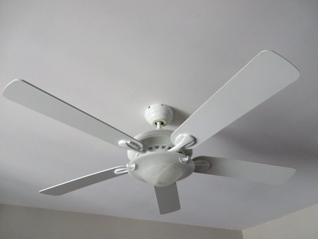 ceiling: White ceiling fan light