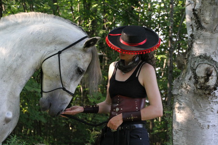 andalusian: Andalusian stallion with horsewoman Stock Photo