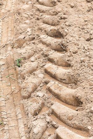 Detail of tyre tracks in sand desert photo