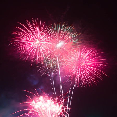 fires artificial: The fireworks display in black sky background to celebration