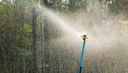 water sprinkler: silhouette splash of water sprinkler Stock Photo