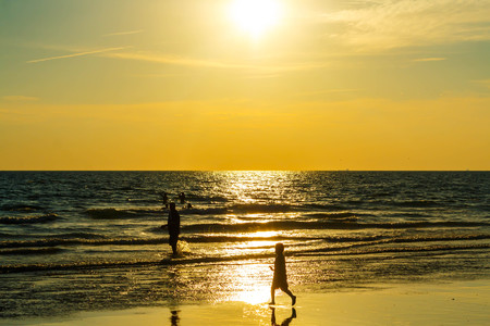 Sandy beach, golden sea, sunset