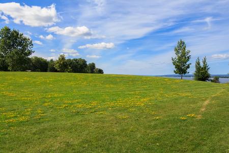 Summer in Andrew Haydon Park, Ottawa Stock Photo