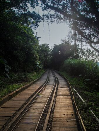 wood railroads: railroad track leading into forest at dusk Stock Photo
