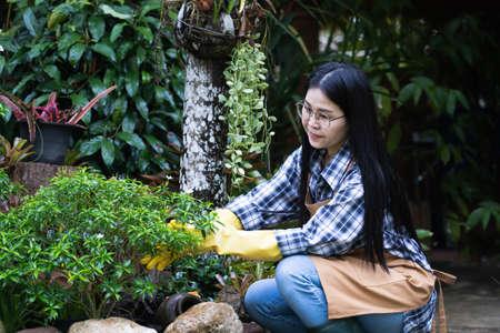 Selective focus,Beautiful young asian woman gardening in brown apron Banco de Imagens