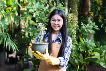 Selective focus Beautiful young asian gardener holding a tree in a pot,smiling and looking at camera.Owner of an outdoor garden supplies and plants store.Nature and ecology theme