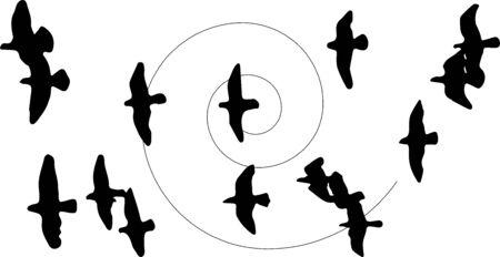 bird icon on white background