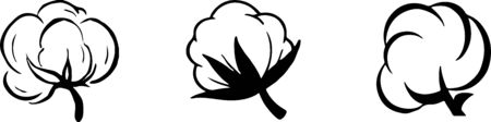 cotton icon isolated on white background