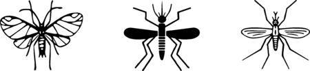 mosquito icon isolated on background Ilustrace