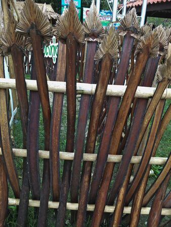Wood fence from palm sugar palm