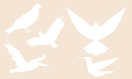 abstract color background with birds Banque d'images