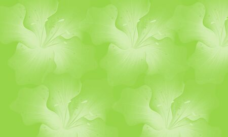 abstract color background with color flower