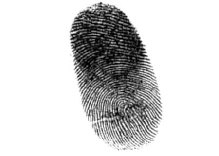 finger print illustration on white background Banque d'images