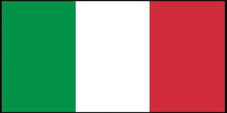 Italy flag  vector illustration isolated on background 일러스트