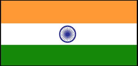 India flag vector illustration isolated on background