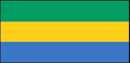 Gabon flag vector illustration isolated on background