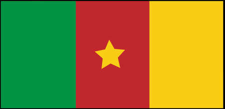 Cameroon flag vector illustration isolated on background