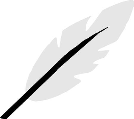 feather icon isolated on background