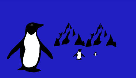 penquin vector illustration isolated on background