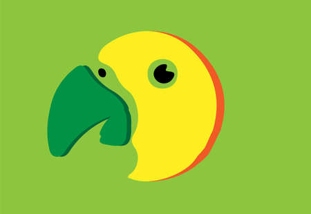 parrot vector illustration isolated on background