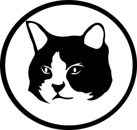 cat vector isolated on background