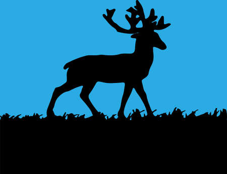 deer vector illustration isolated on background