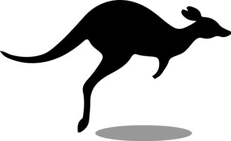 kangaroo vector illustration isolated on background
