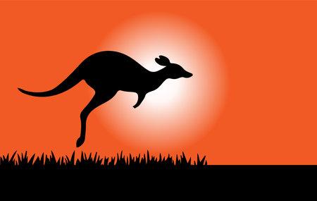 kangaroo vector illustration isolated on background