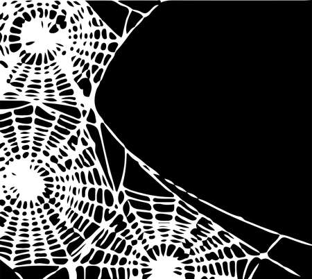 spider web vector illustration isolated on background