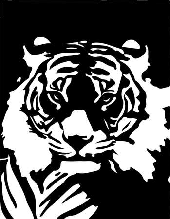 tiger vector on white background