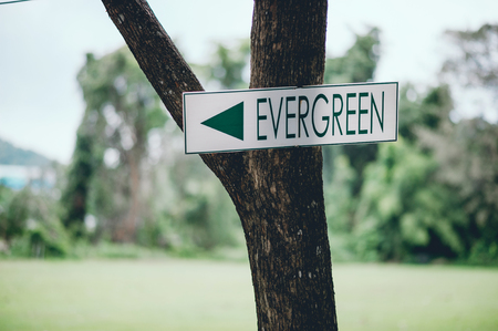 Green sign Stuck on a green tree to tell the way. And the appropriate area of action.
