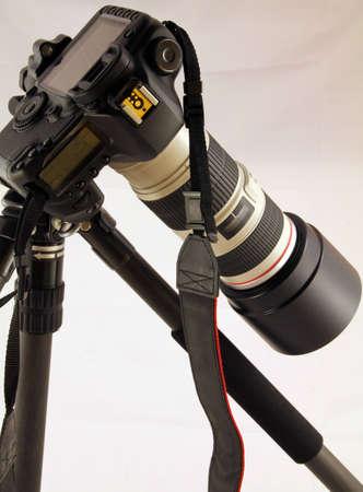 tele: Canon  5D EOS MkII + Canon 70-200 USM IS + Giotto Editorial
