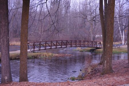 Bridge Beyond The Trees