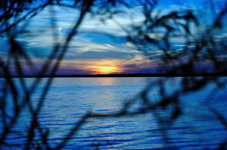 Deep Blue Sunset with Silhouette of Branches over Lake Petenwell, Wisconsin